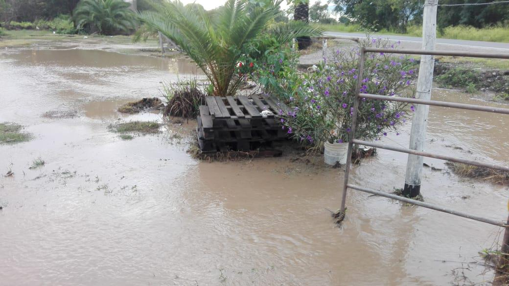 Manantiales desbordó el río Perico y se inundó todo 002